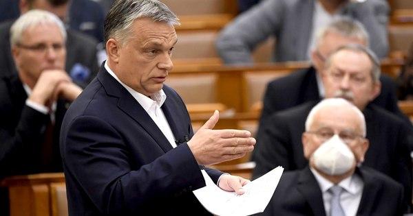 Fideszes írók